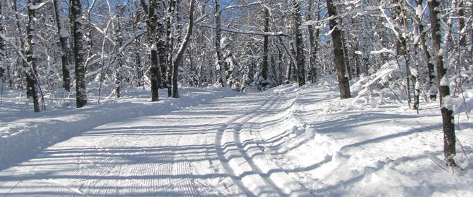 The Groomed Trail